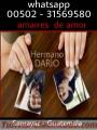 SALGA DE DUDAS EL TAROT LO DICE TODO HERMANO DARIO 00502-31569580