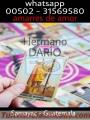 TAROT PARA EL AMOR HERMANO DARIO 00502-31569580