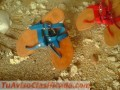 sandalias-de-cuero-en-todo-color-baratisimas-4404-1.jpg