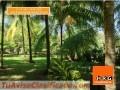 vendo-casa-de-playa-beach-home-for-sale-playa-san-diego-el-salvador-2.JPG